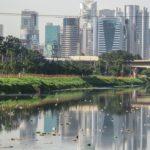 River pollution essay in hindi