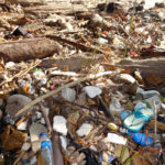 Plastic pollution essay in hindi
