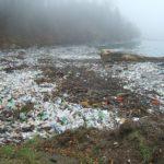 Poem on plastic pollution in hindi