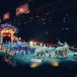 Circus Essay, poem in Hindi