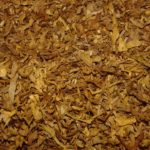 speech on anti tobacco day in hindi