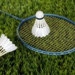 Essay on mera priya khel badminton in hindi