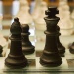 Mera priya khel chess essay in hindi