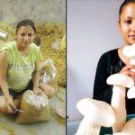 Divya rawat mushroom lady in hindi