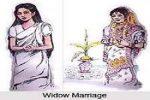 vidhwa vivah essay in hindi
