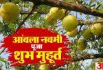 Amla(Akshay) navami ki katha, puja vidhi in hindi