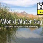 world water day essay, speech in hindi
