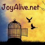 Essay on birds freedom in hindi