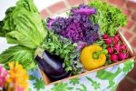 Essay on green vegetables in hindi