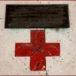 World red cross day speech in hindi