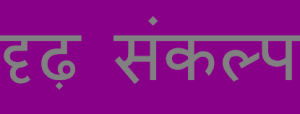 Essay on determination in hindi